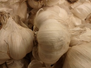 Garlic is also known as Nectar of the Gods... find out why!