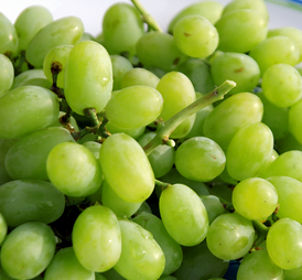 Hydration – Beautiful Succulent Grape or Dried Up Raisin?