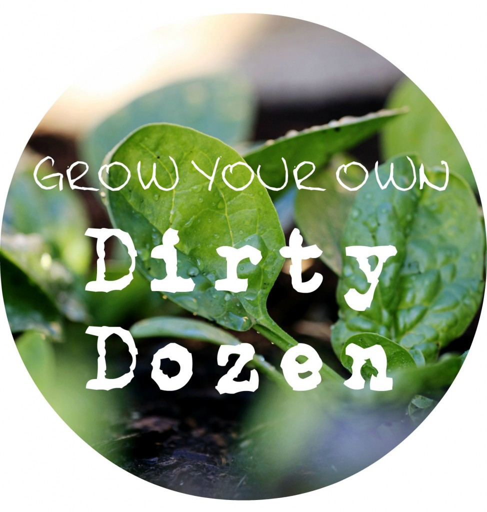 grow your own dirty dozen